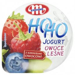 MLEKOVITA JOGURT HOHO OWOCE...