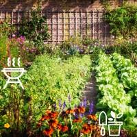 Ogród Grill